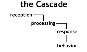 Communication Cascade