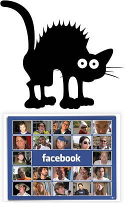 FB Scaredy Cat