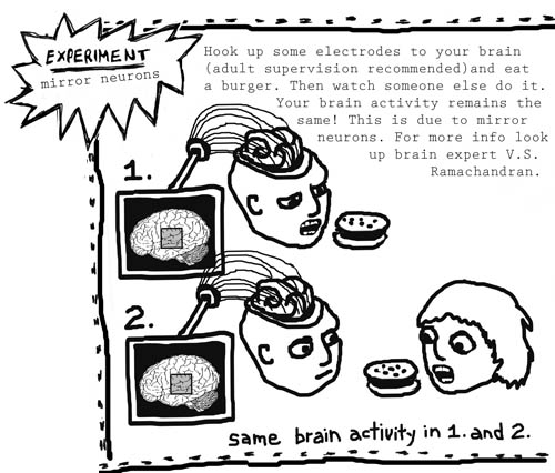 Image found at: http://healthyinfluence.com/wordpress/wp-content/uploads/2011/07/Mirror-Neuron-Cartoon.jpg